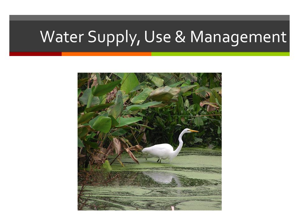 Water Supply, Use & Management
