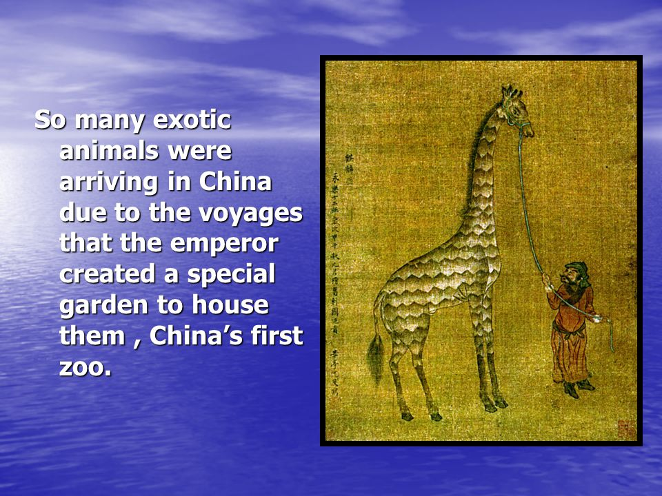 So many exotic animals were arriving in China due to the voyages that the emperor created a special garden to house them , China's first zoo.