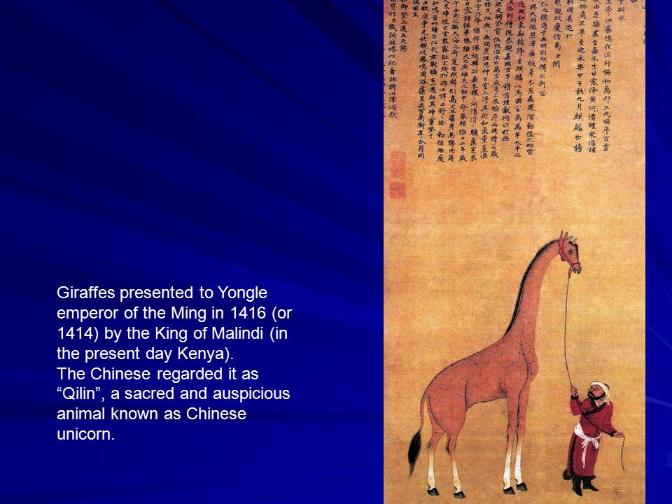 Giraffes presented to Yongle emperor of the Ming in 1416 (or 1414) by the King of Malindi (in the present day Kenya).