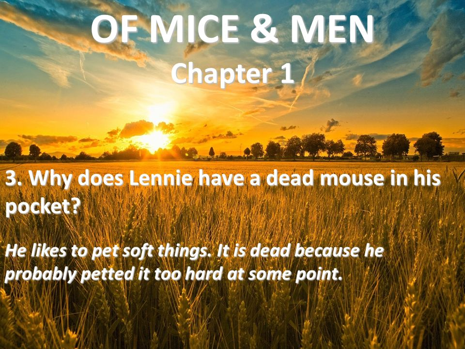 OF MICE & MEN Chapter 1 3. Why does Lennie have a dead mouse in his pocket