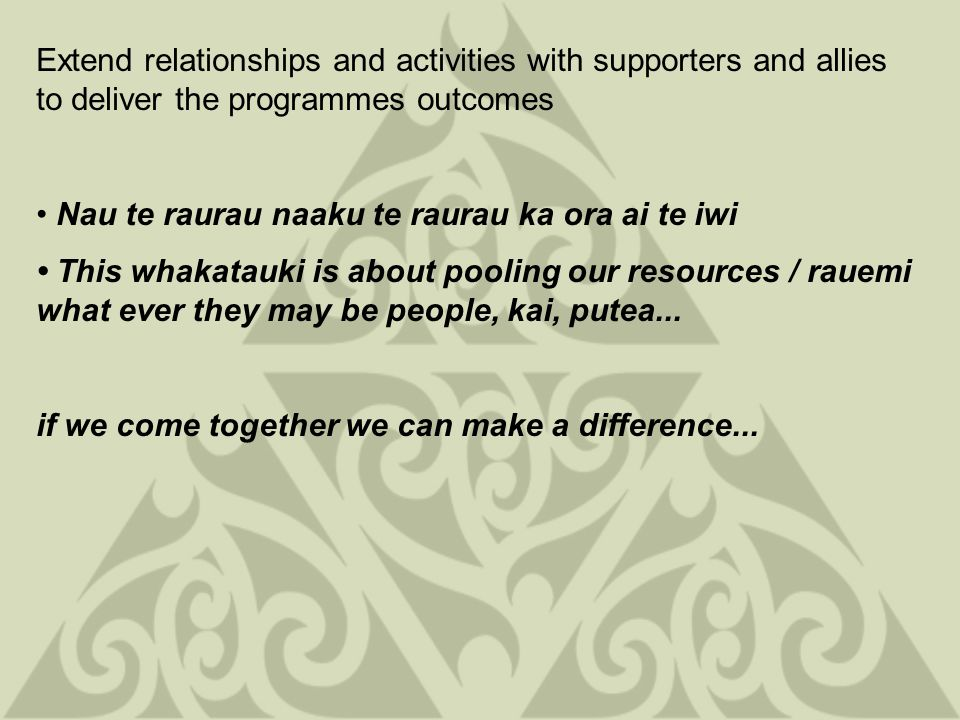 Extend relationships and activities with supporters and allies to deliver the programmes outcomes