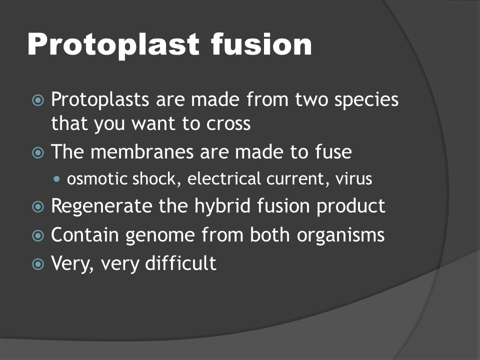 Protoplast fusion Protoplasts are made from two species that you want to cross. The membranes are made to fuse.