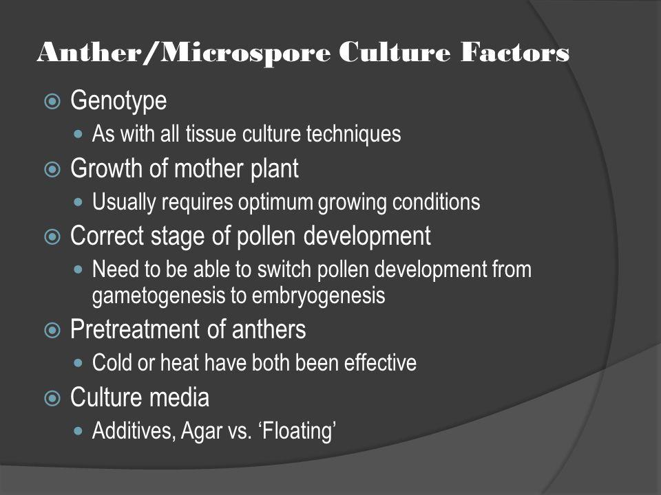 Anther/Microspore Culture Factors