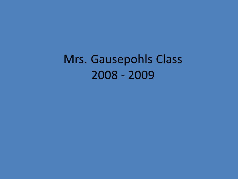 Mrs. Gausepohls Class 2008 - 2009