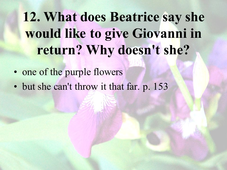 12. What does Beatrice say she would like to give Giovanni in return