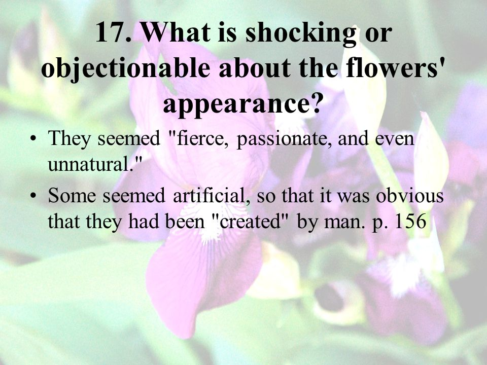 17. What is shocking or objectionable about the flowers appearance