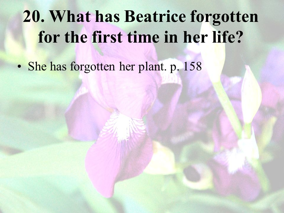 20. What has Beatrice forgotten for the first time in her life