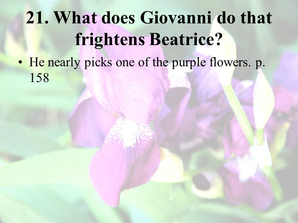 21. What does Giovanni do that frightens Beatrice