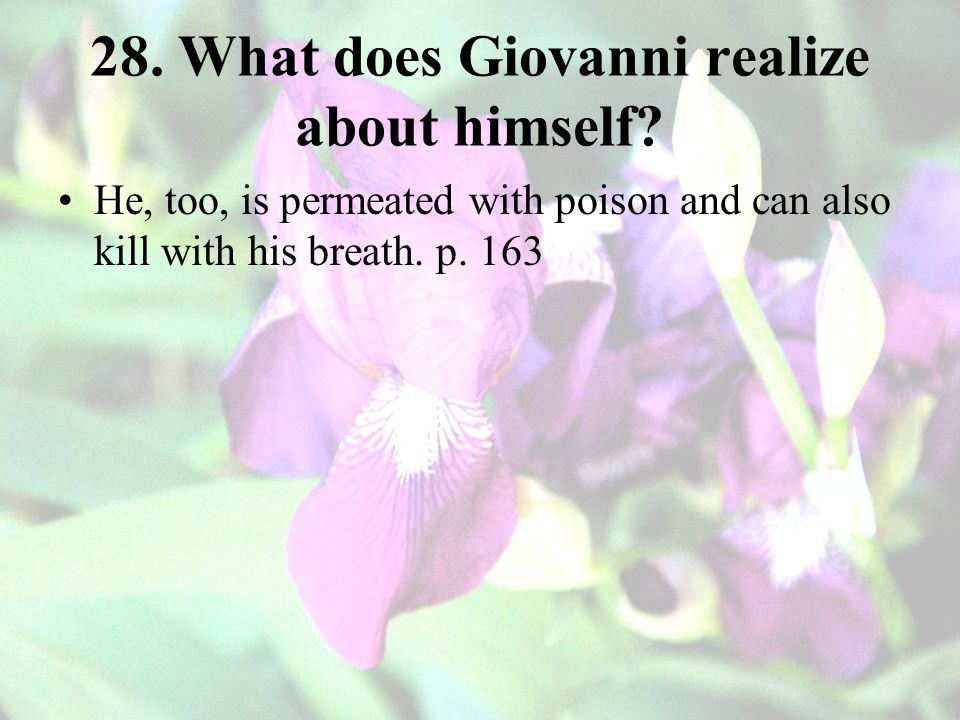 28. What does Giovanni realize about himself