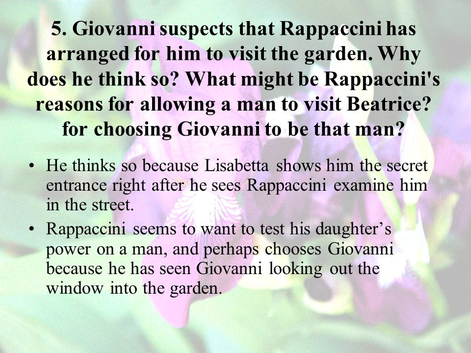 5. Giovanni suspects that Rappaccini has arranged for him to visit the garden. Why does he think so What might be Rappaccini s reasons for allowing a man to visit Beatrice for choosing Giovanni to be that man