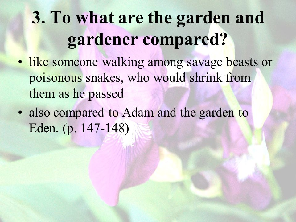 3. To what are the garden and gardener compared