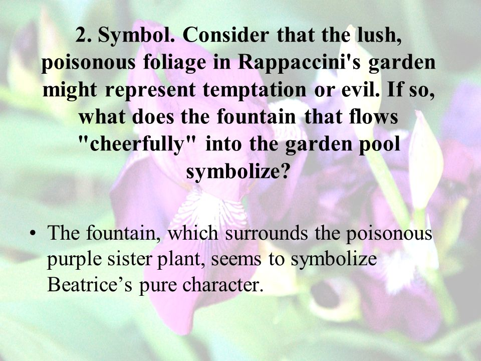 2. Symbol. Consider that the lush, poisonous foliage in Rappaccini s garden might represent temptation or evil. If so, what does the fountain that flows cheerfully into the garden pool symbolize