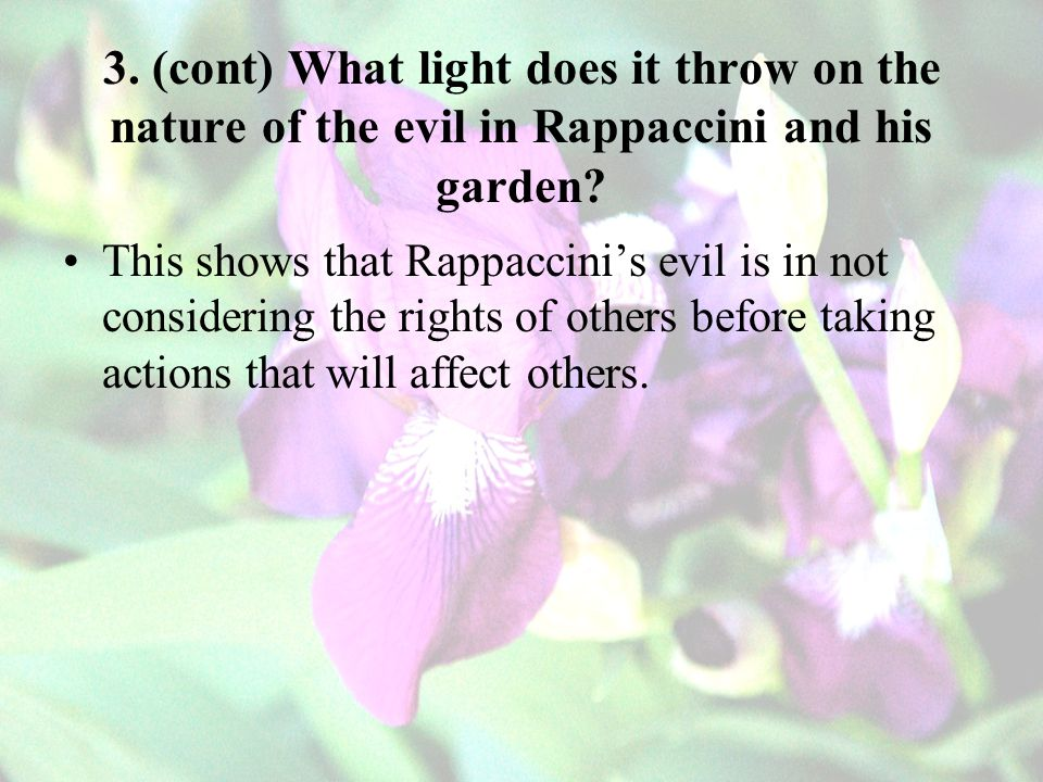 3. (cont) What light does it throw on the nature of the evil in Rappaccini and his garden