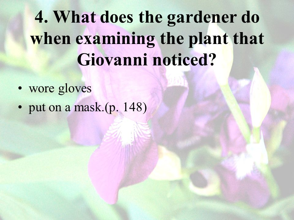 4. What does the gardener do when examining the plant that Giovanni noticed