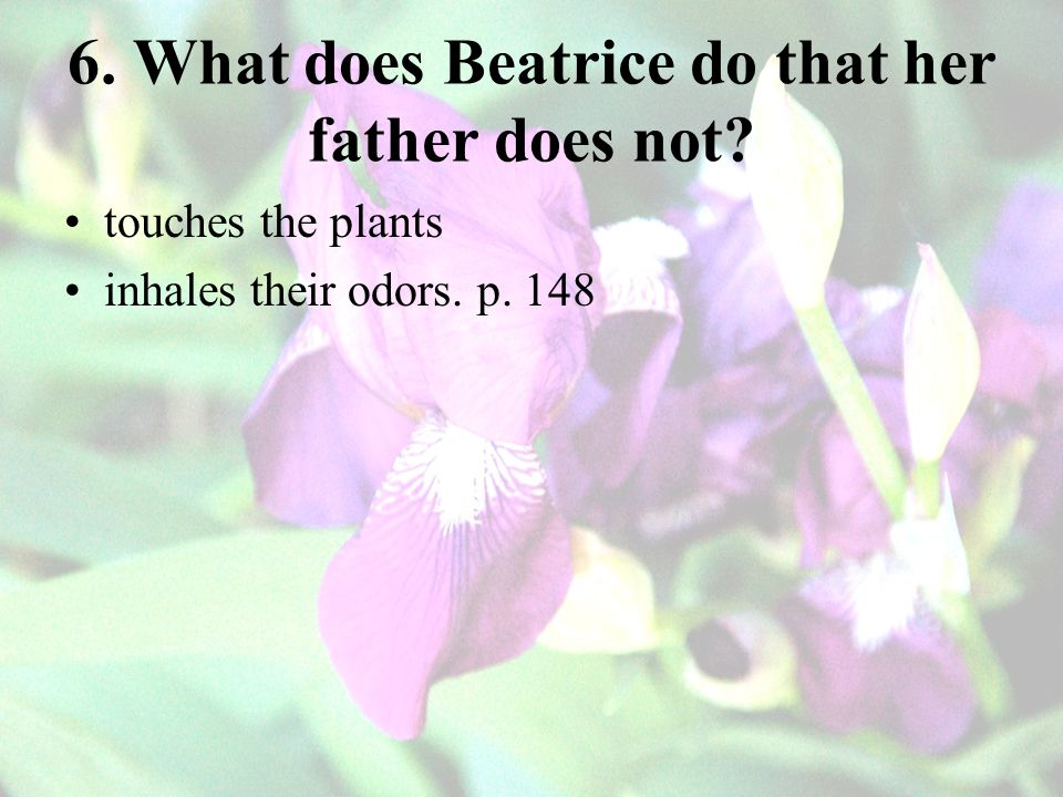 6. What does Beatrice do that her father does not