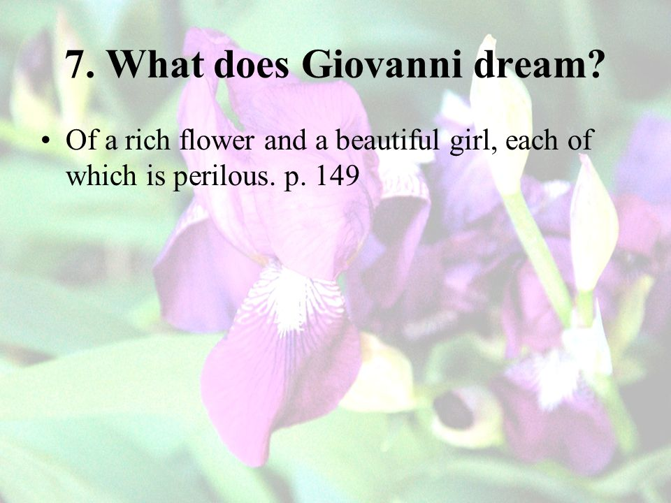 7. What does Giovanni dream