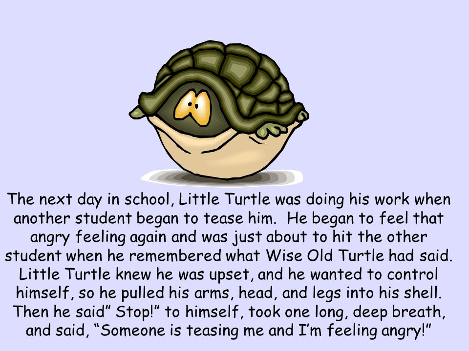 The next day in school, Little Turtle was doing his work when another student began to tease him.