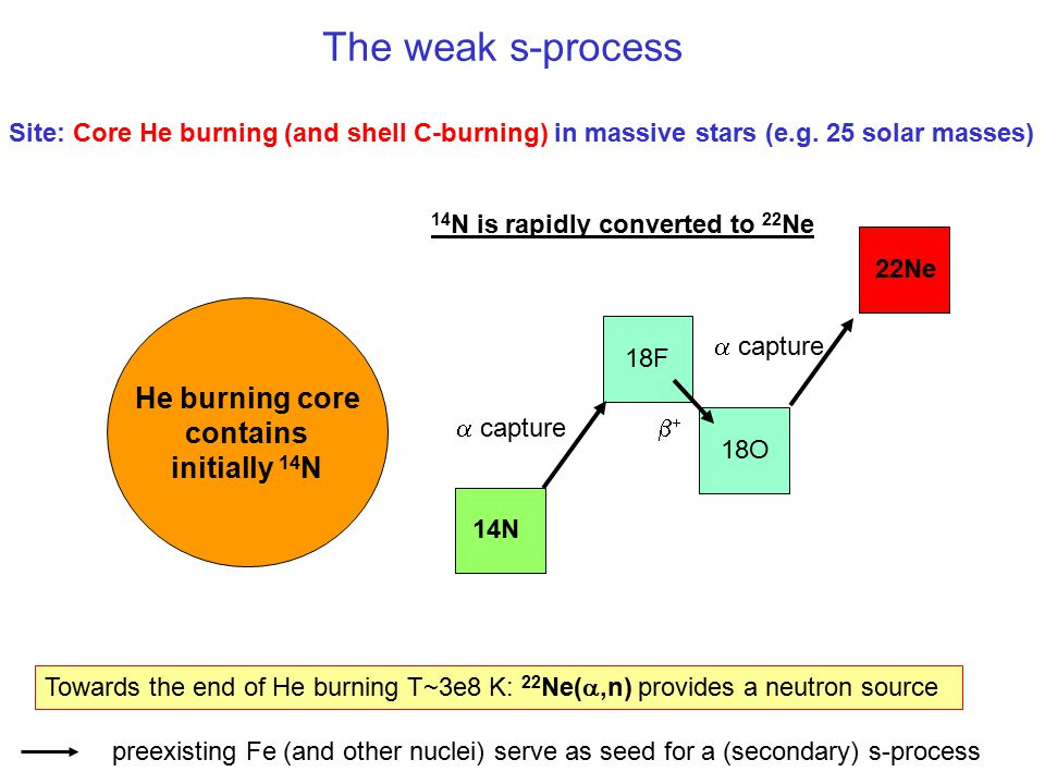 He burning core contains initially 14N