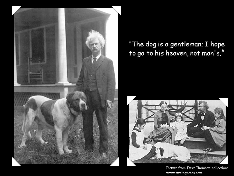 The dog is a gentleman; I hope to go to his heaven, not man s.