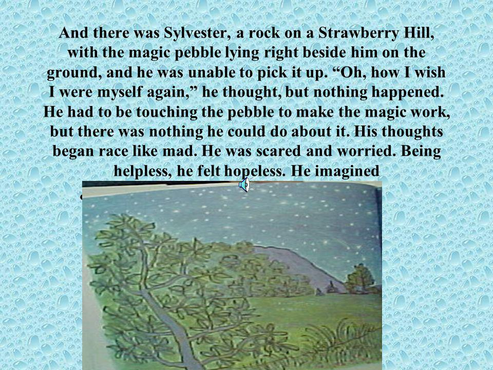 And there was Sylvester, a rock on a Strawberry Hill, with the magic pebble lying right beside him on the ground, and he was unable to pick it up.