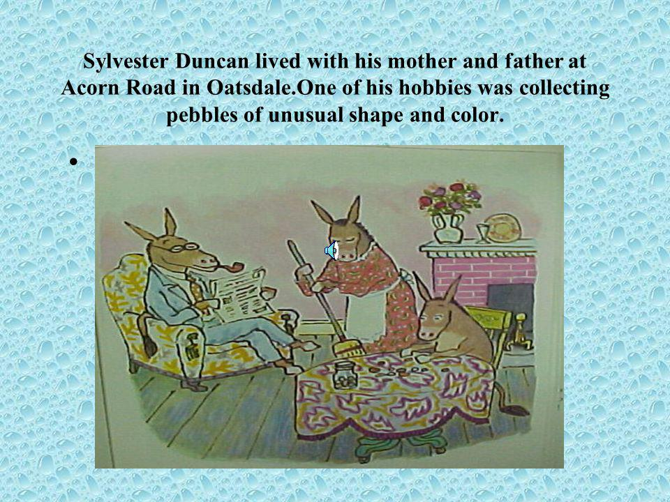 Sylvester Duncan lived with his mother and father at Acorn Road in Oatsdale.One of his hobbies was collecting pebbles of unusual shape and color.