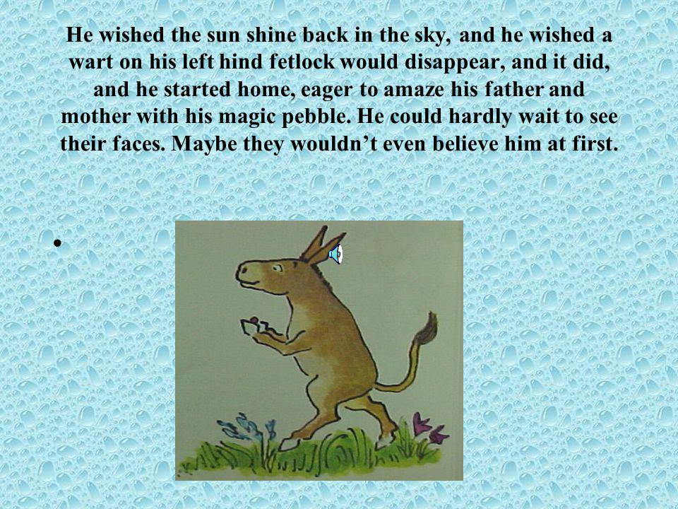 He wished the sun shine back in the sky, and he wished a wart on his left hind fetlock would disappear, and it did, and he started home, eager to amaze his father and mother with his magic pebble.