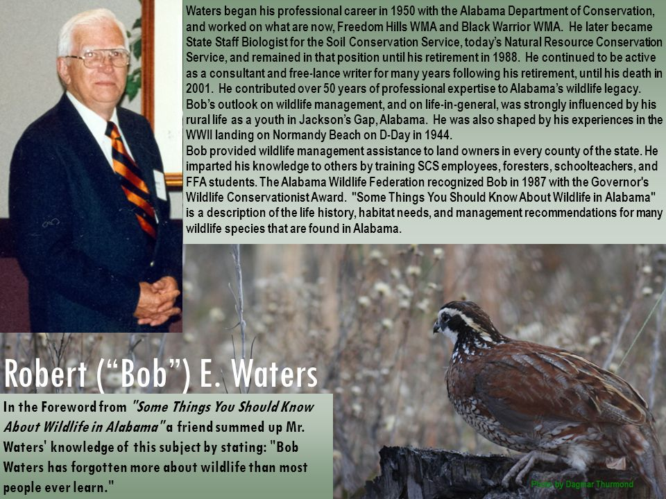Robert ( Bob ) E. Waters