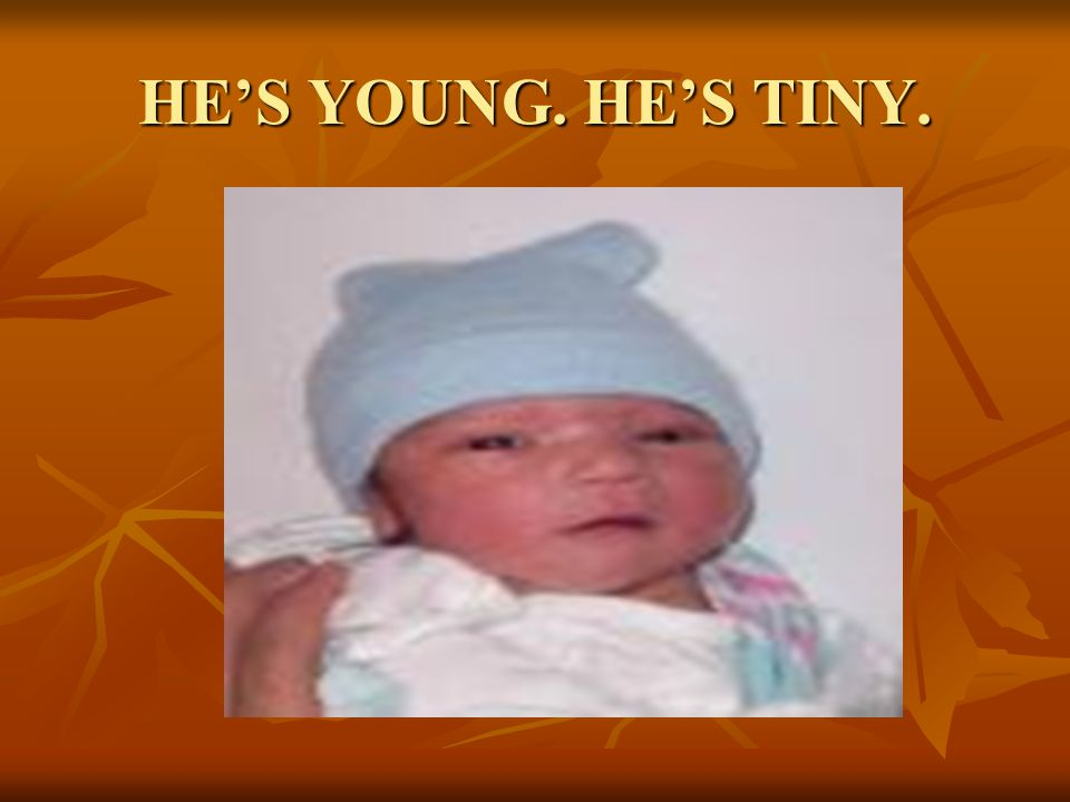 HE'S YOUNG. HE'S TINY.
