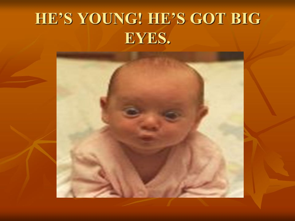 HE'S YOUNG! HE'S GOT BIG EYES.