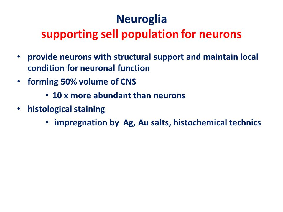 Neuroglia supporting sell population for neurons