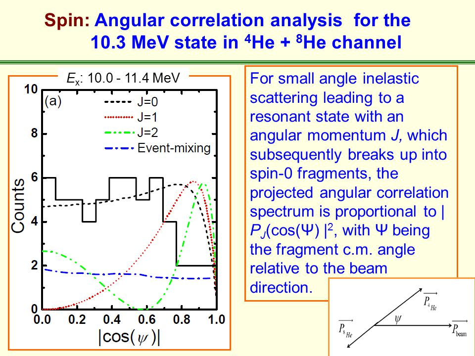Spin: Angular correlation analysis for the