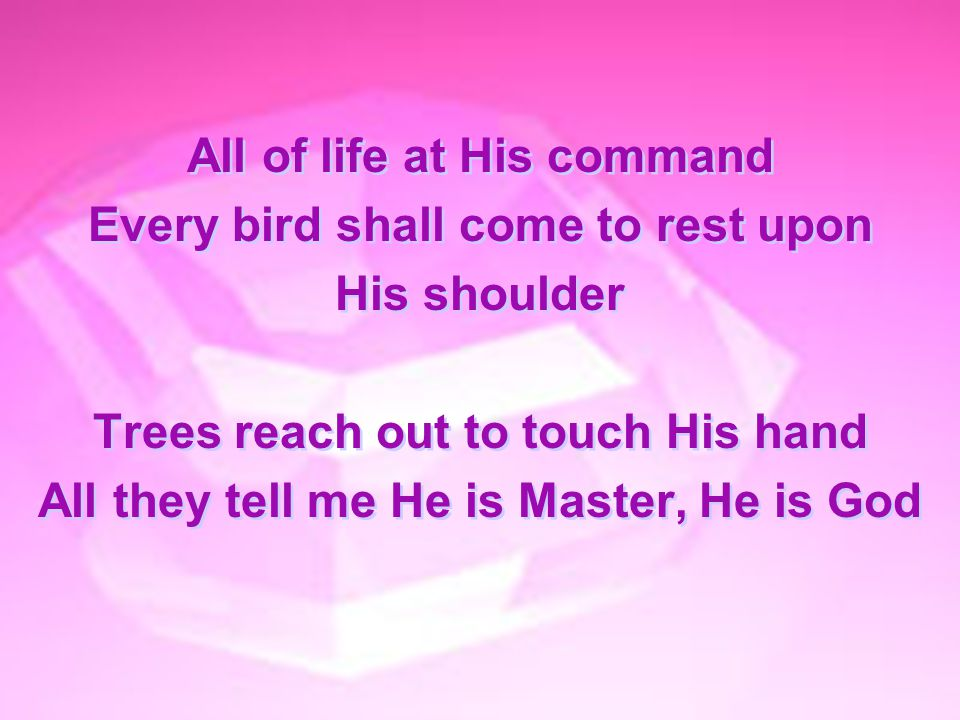 All of life at His command Every bird shall come to rest upon