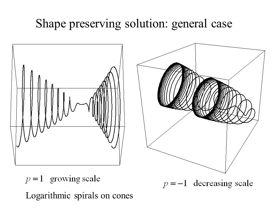 Shape preserving solution: general case