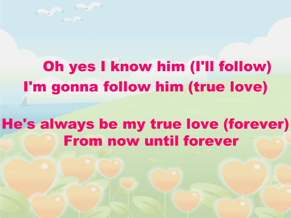Oh yes I know him (I ll follow) I m gonna follow him (true love)