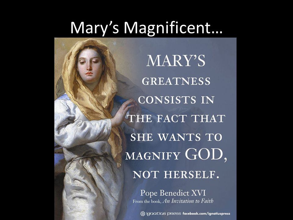 Mary's Magnificent…