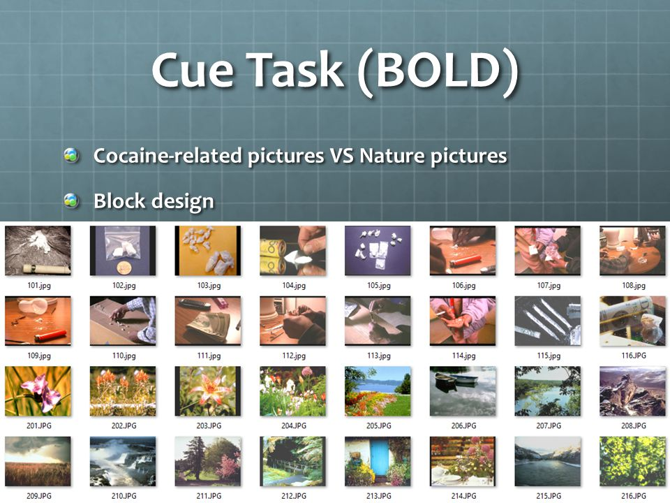 Cue Task (BOLD) Cocaine-related pictures VS Nature pictures