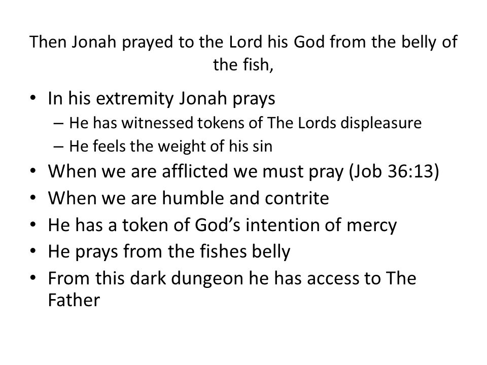 Then Jonah prayed to the Lord his God from the belly of the fish,
