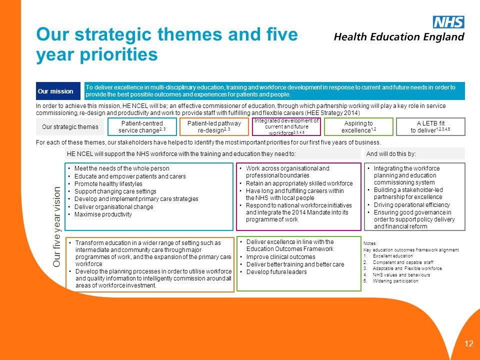 Our strategic themes and five year priorities