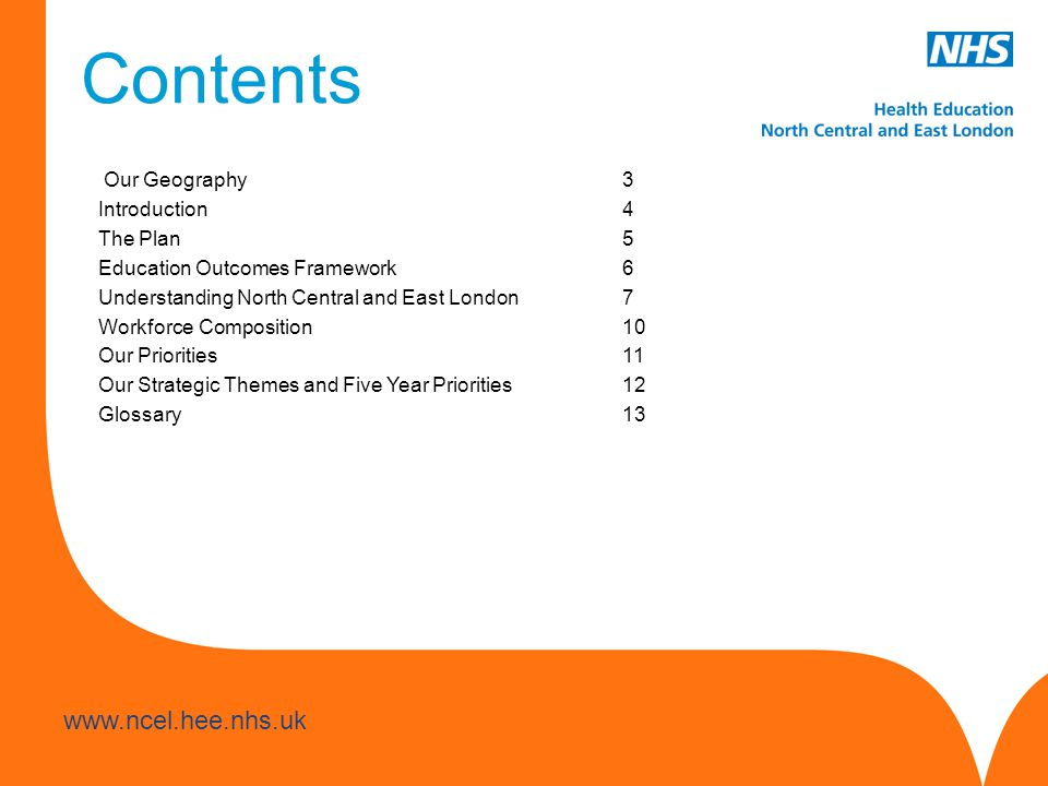 Contents Our Geography 3 Introduction 4 The Plan 5