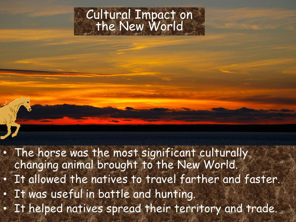 Cultural Impact on the New World