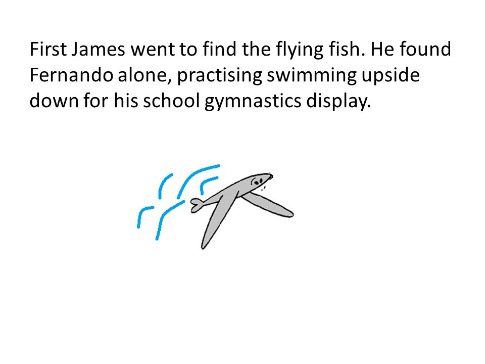 First James went to find the flying fish