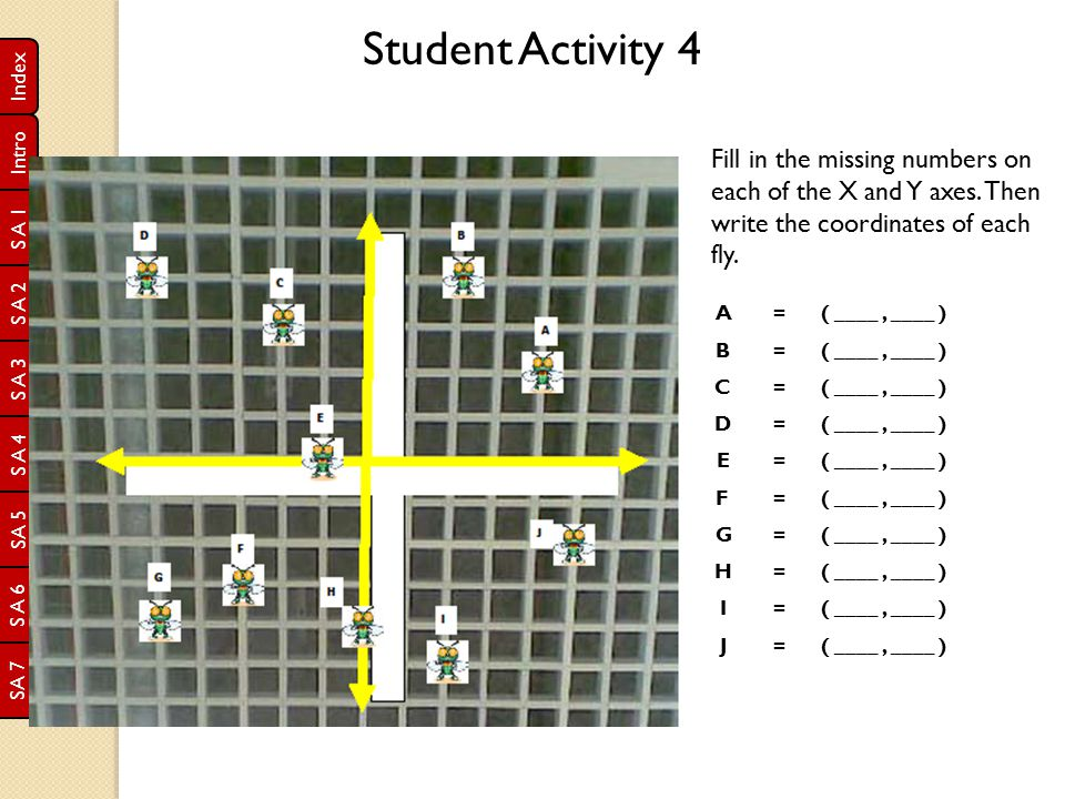 Student Activity 4 Fill in the missing numbers on each of the X and Y axes. Then write the coordinates of each fly.