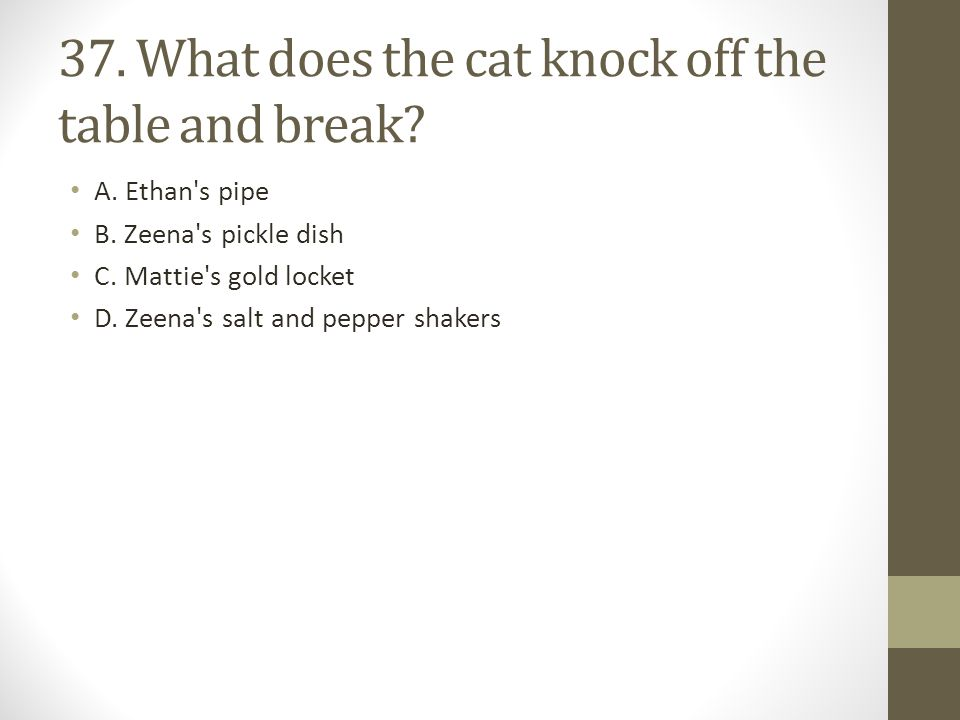 37. What does the cat knock off the table and break