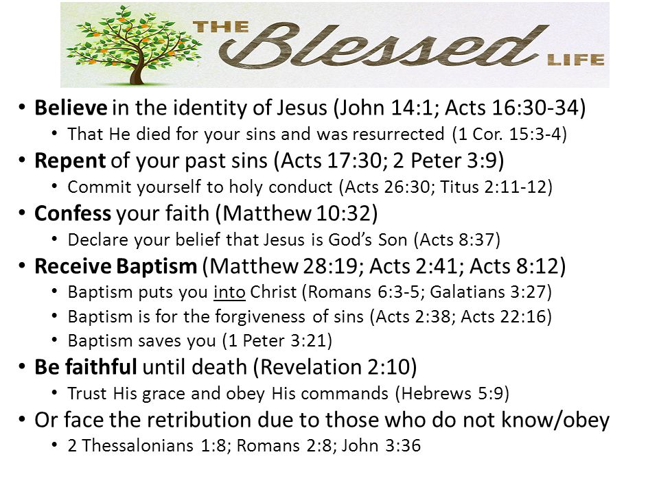 Believe in the identity of Jesus (John 14:1; Acts 16:30-34)