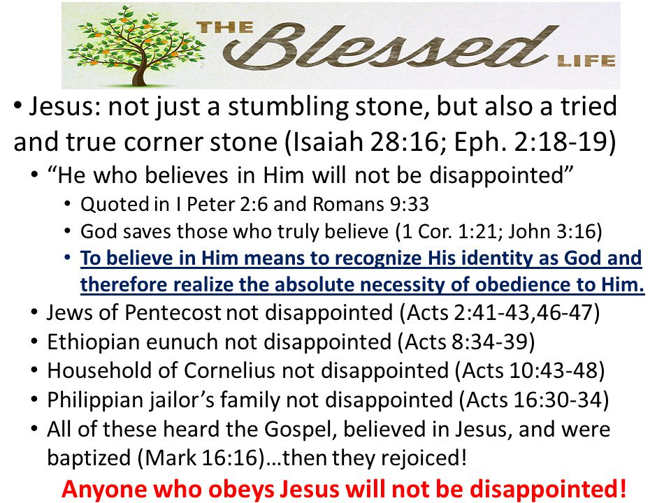 Anyone who obeys Jesus will not be disappointed!