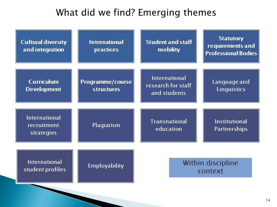 What did we find Emerging themes