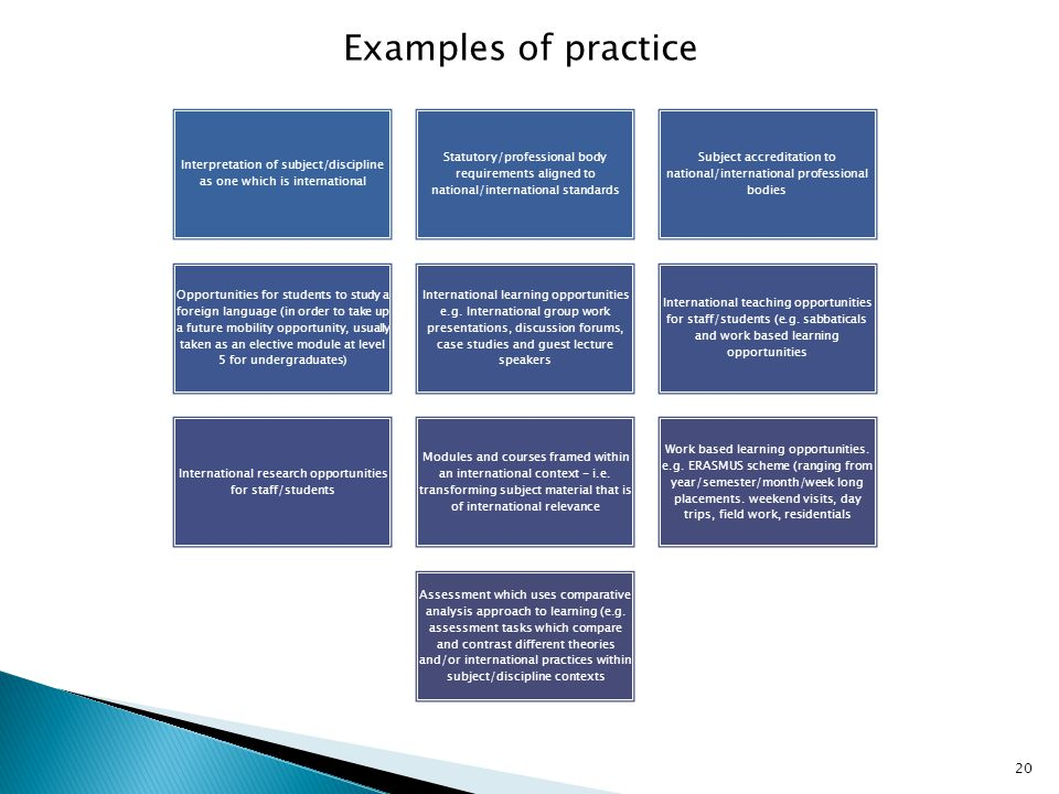 Examples of practice Interpretation of subject/discipline as one which is international.