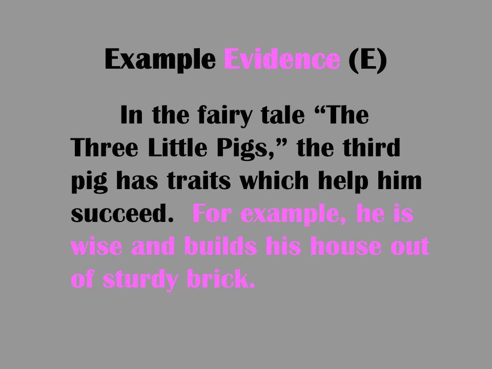Example Evidence (E)