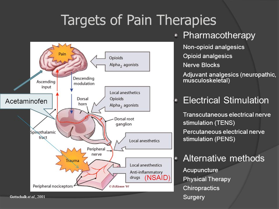 Targets of Pain Therapies