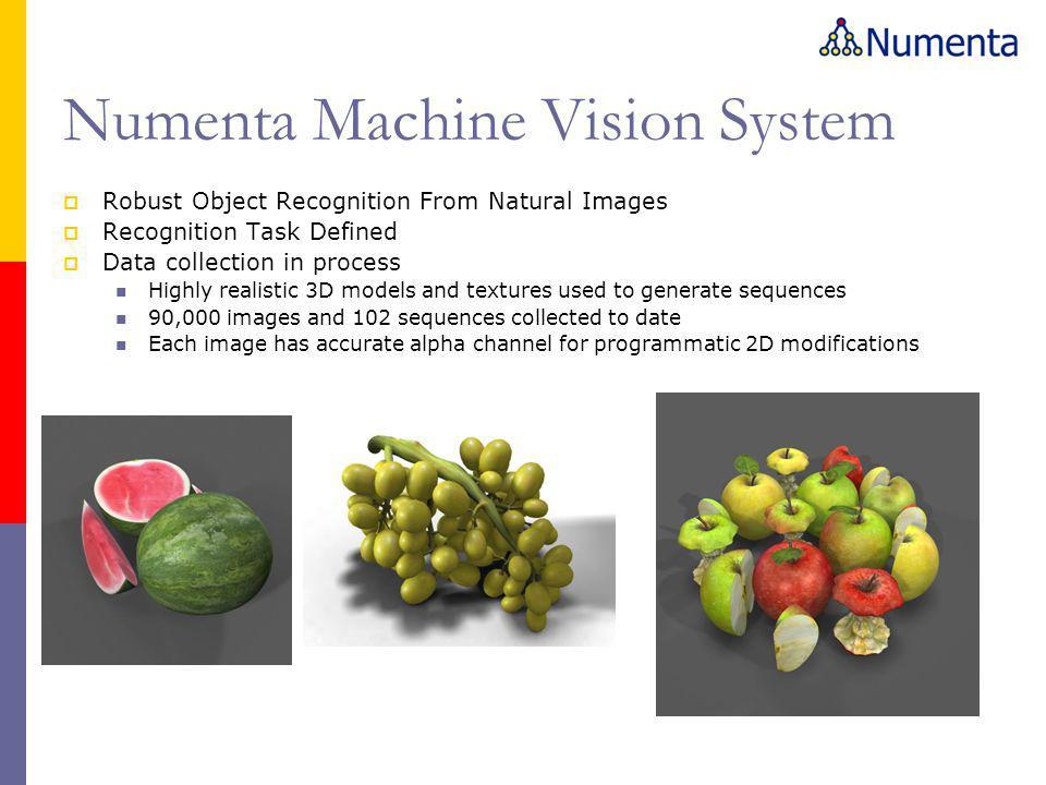 Numenta Machine Vision System